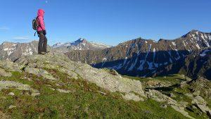Basodino, Helgenhorn, Rotentalhorn